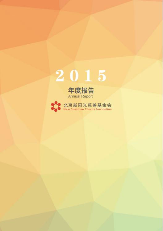 北京新阳光慈善基金会2015年度工作报告
