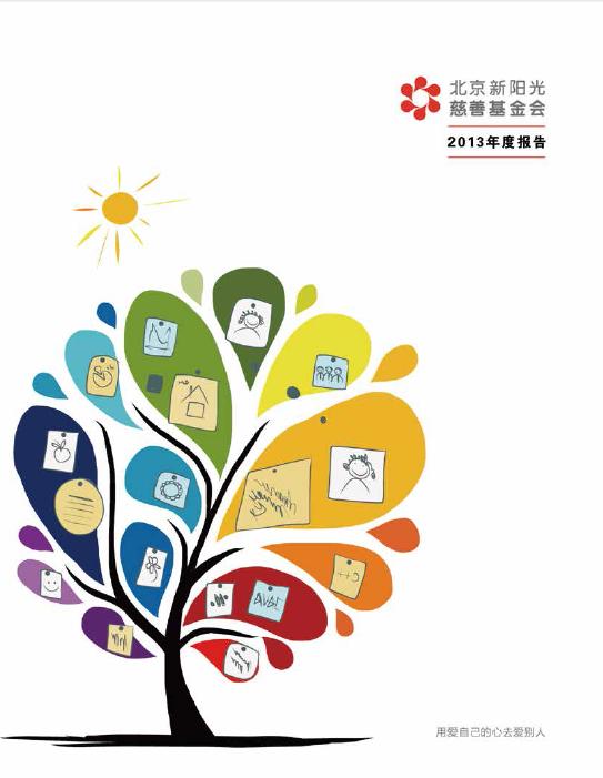 北京新阳光慈善基金会2013年度工作报告