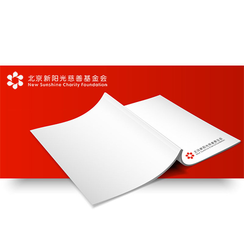 北京新阳光慈善基金会2017年审计报告