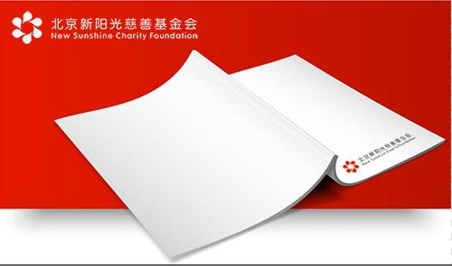 北京新阳光慈善基金会2019年审计报告