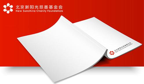北京新阳光慈善基金会2020年审计报告